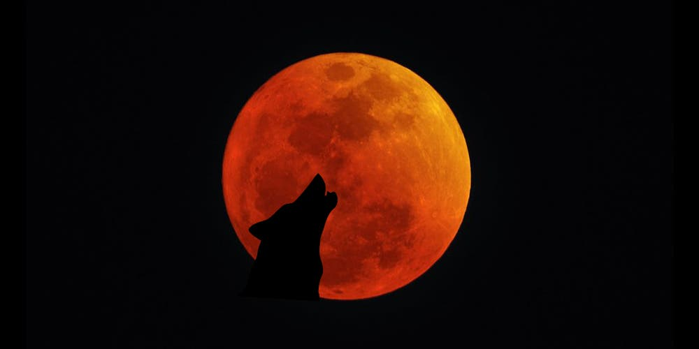 """Esta noche será el primer eclipse de 2020: """"Luna llena del Lobo"""""""