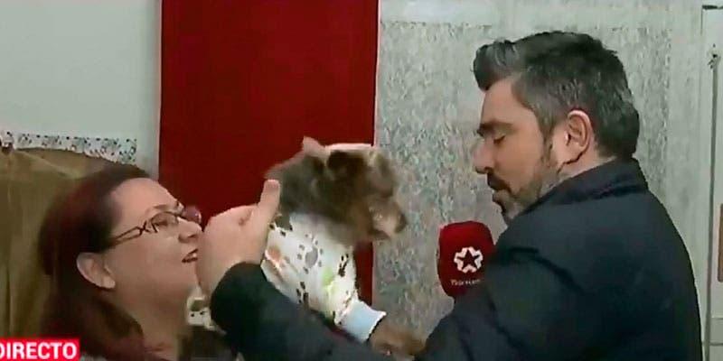 Video: Perro muerde a reportero en plena transmisión en vivo