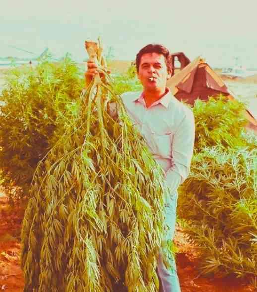 """Enrique """"Kiki"""" Camarena en el rancho El Bufalo, un sembradío de una hectárea de mariguana."""