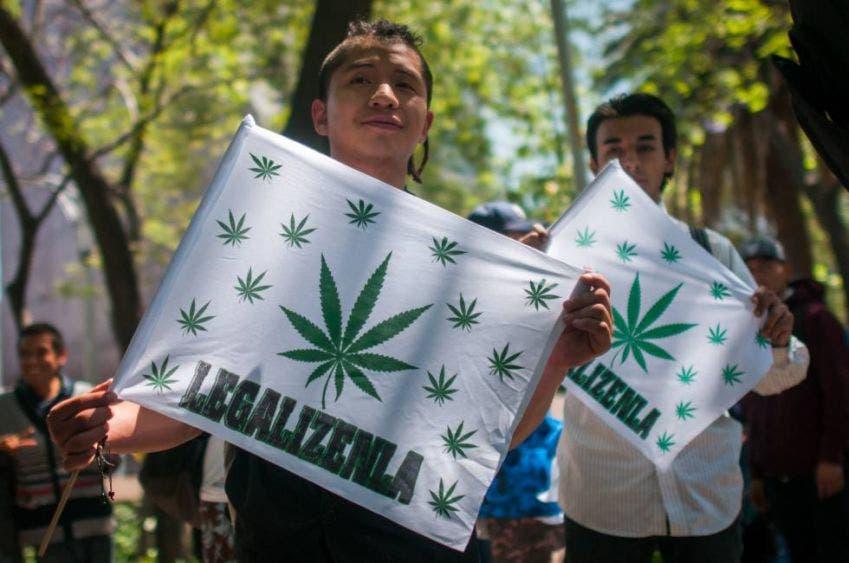 Busca Canadá negocio de la mariguana legal en México
