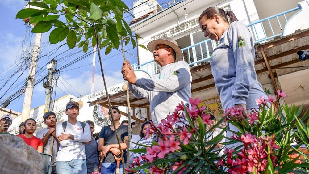 "Inicia la campaña ""Reforestemos Tulum 2020"""