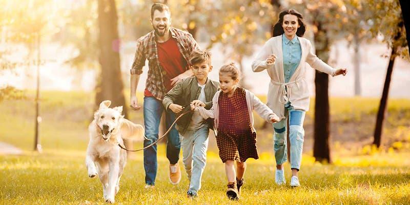 10 reglas básicas que todo padre debe cumplir con sus hijos