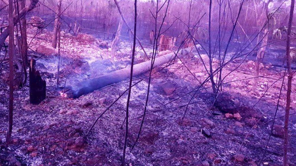 Escasez de agua debida a Infraestructura dañada por incendios: CFE