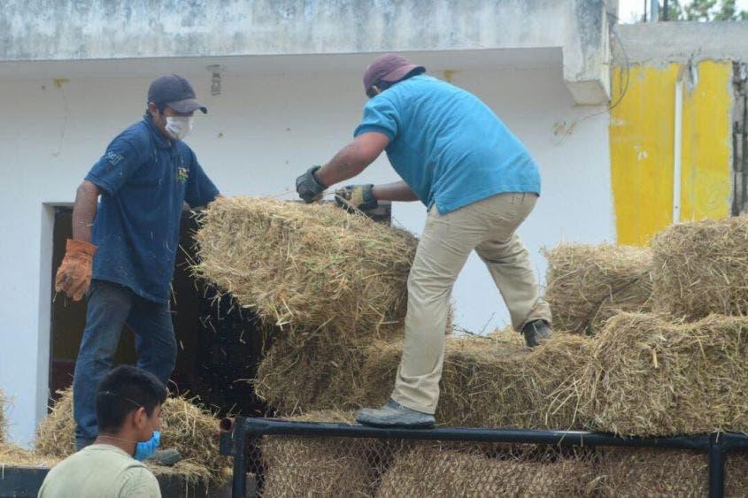 Empresario brinda ayuda a ganaderos de José María Morelos.