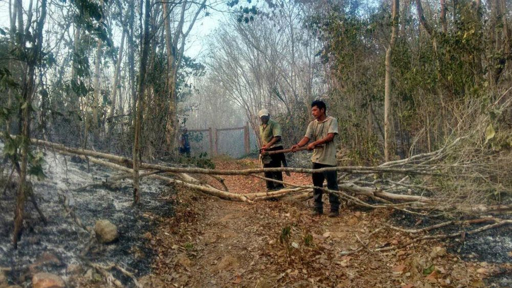 Suspenden quemas agrícolas en Tihosuco