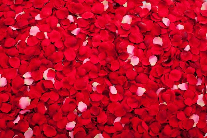 Mascarilla de pétalos de rosas para hacer crecer tu cabello sin caspa