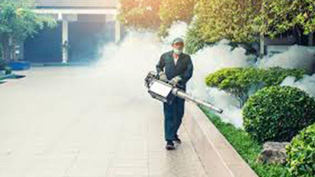 El COVID-19 y ahora el dengue, causas de muerte en Jalisco