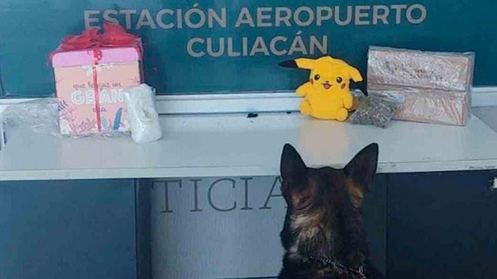 Aseguran droga oculta en un muñeco de peluche en aeropuerto