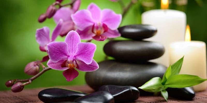 10 flores que te darán buena suerte según el Feng Shui