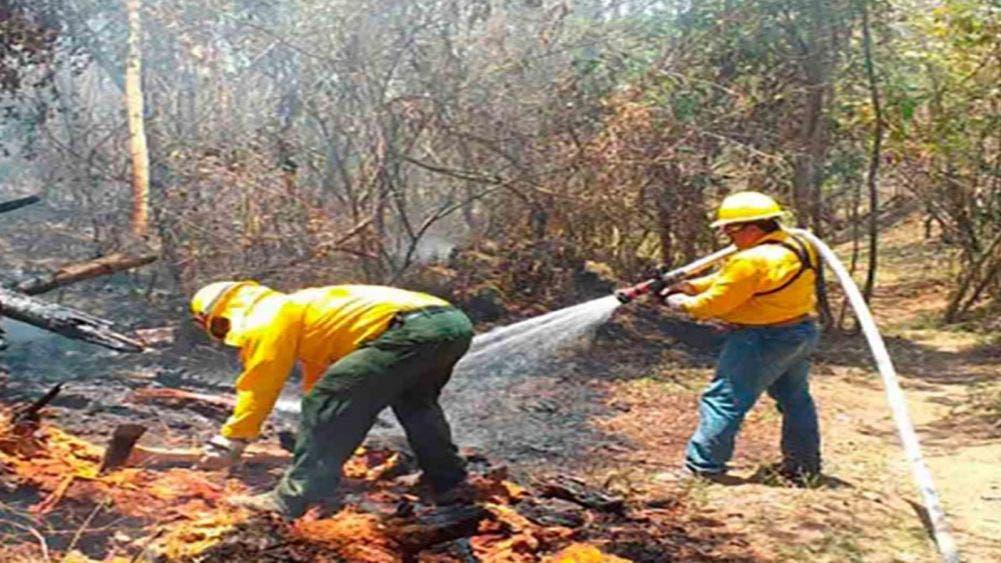 Apagan 'Incendio Forestal de Atención Especial' en Michoacán