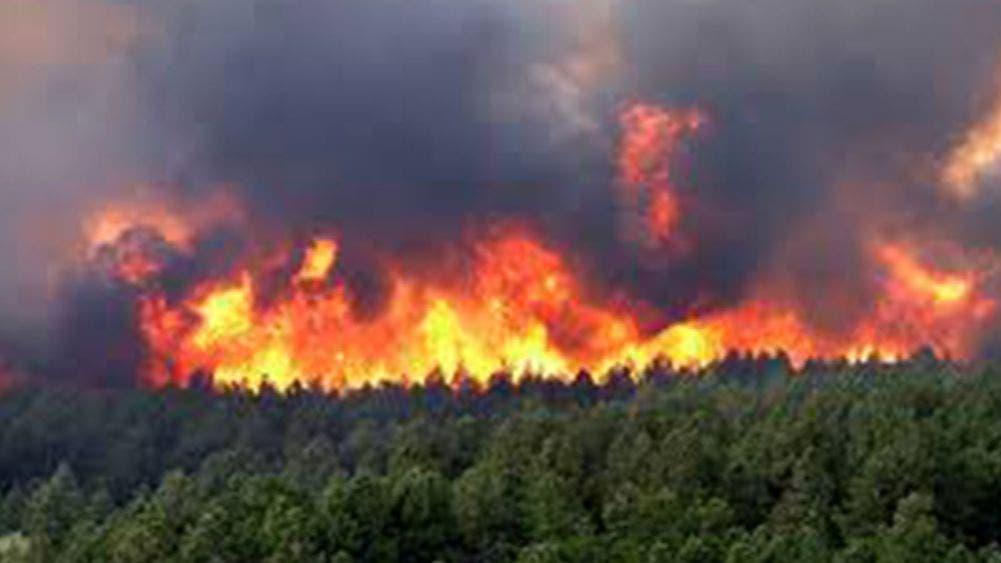 Continúan causando estragos 55 incendios forestales en 15 estados