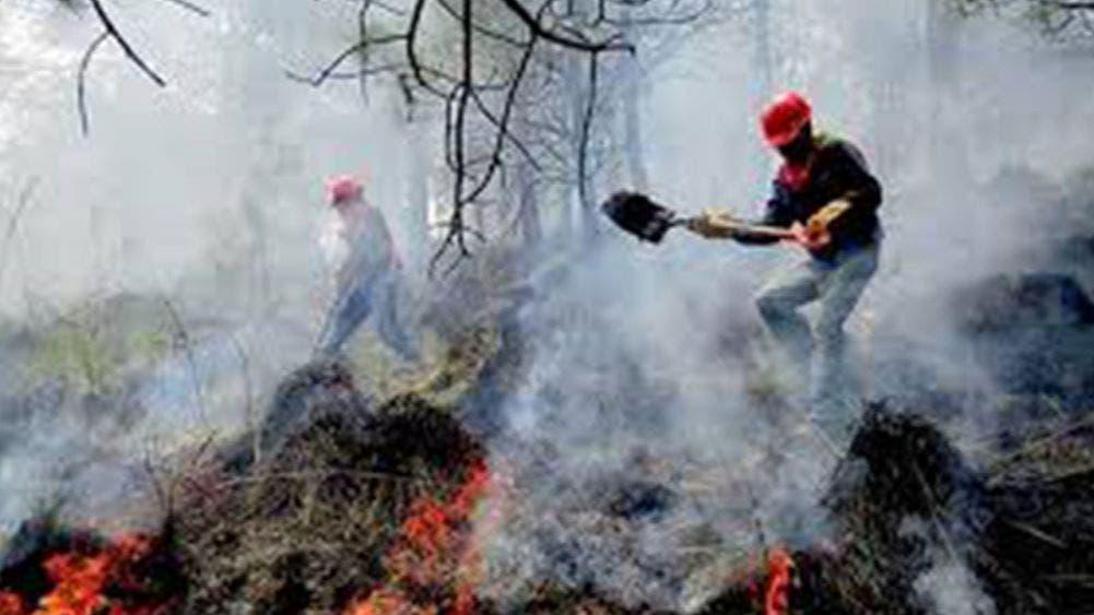 No ceden los incendios forestales; reporta Conafor 70 en 16 estados