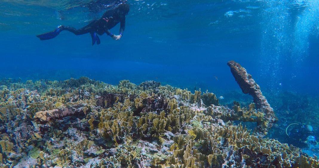 Descubren naufragio de más de 200 años en aguas de Quintana Roo