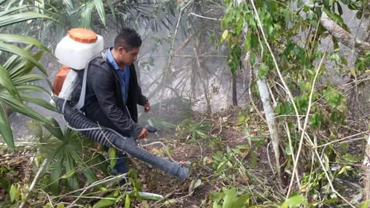 Incendio forestal daña estructuras de la zona arqueológica de Ichkabal.