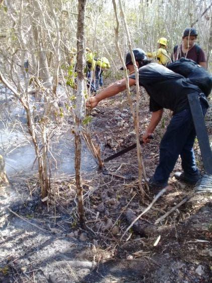 Sofocan al 100% el incendio de Xlapak que afectó a Yalahau.
