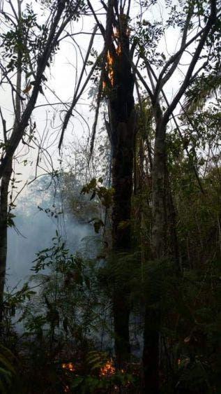 Evaluará INAH daños en zonas arqueológicas por incendios forestales; se activará el seguro por siniestros para reiniciar la restauración.