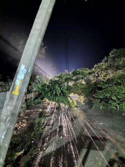 Sorprende tromba a habitantes de José María Morelos; lluvia y fuertes vientos provocaron la caída de árboles y averió postes de la CFE.
