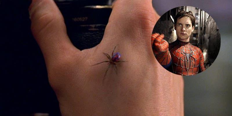 Intenta imitar a Spider-Man y se dejan picar por viuda negra
