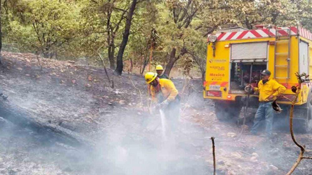 A la baja los incendios forestales; 3 en dos estados del país