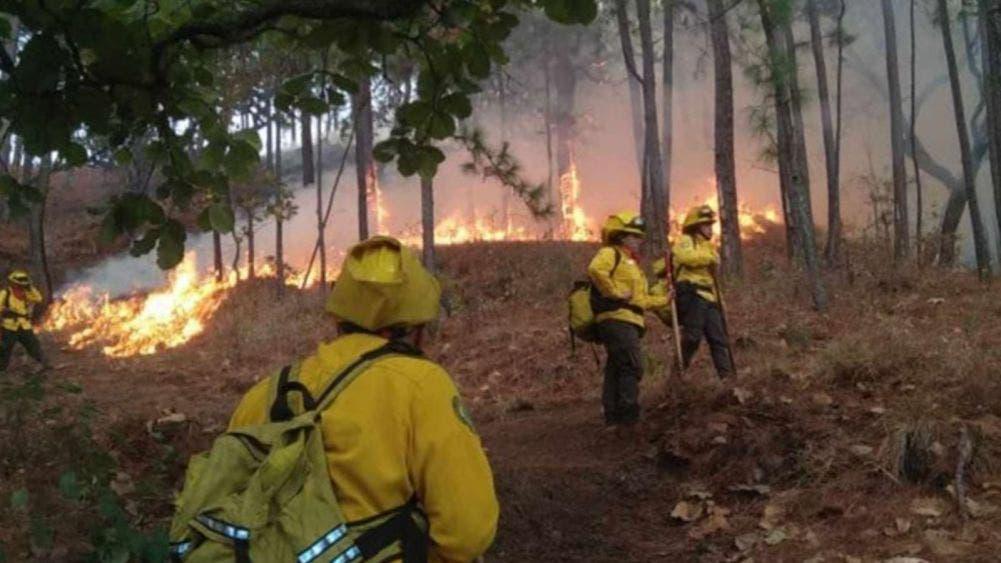 Continúan activos 22 incendios forestales en 5 estados del país