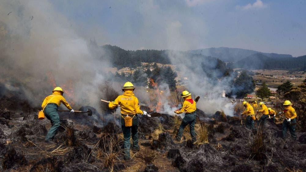Las lluvias aminoran los incendios forestales