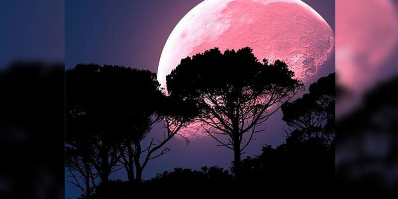 Disfruta de la Luna de Fresa este 5 de junio