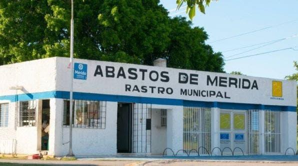 Mérida: Tras cierre del rastro municipal, prevén posible desabasto de carne de cerdo