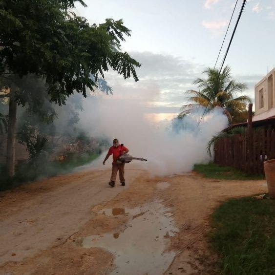Continúan trabajos de nebulización en contra del mosquito en Lázaro Cárdenas; realizan trabajos de  termonebulización para el control larvario.