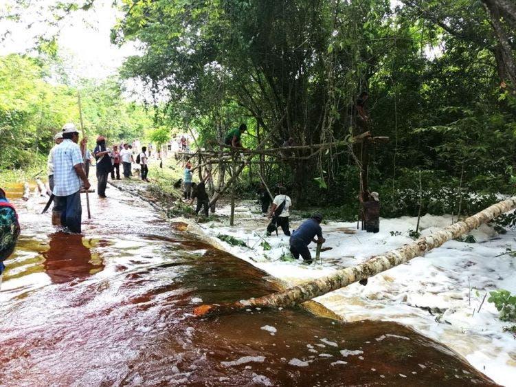 Inundaciones y plagas amenazan los cultivos en comunidades mayas.