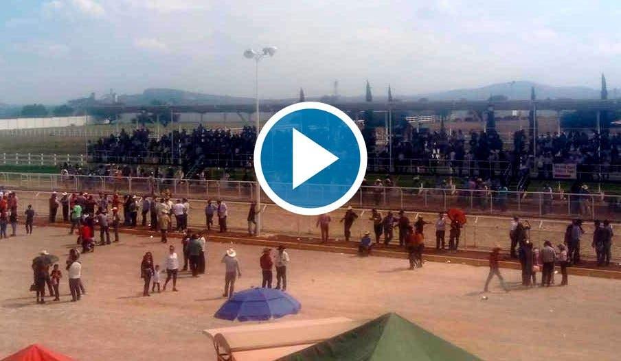 Video: Cinco muertos en una carrera de caballos clandestina en Hidalgo.