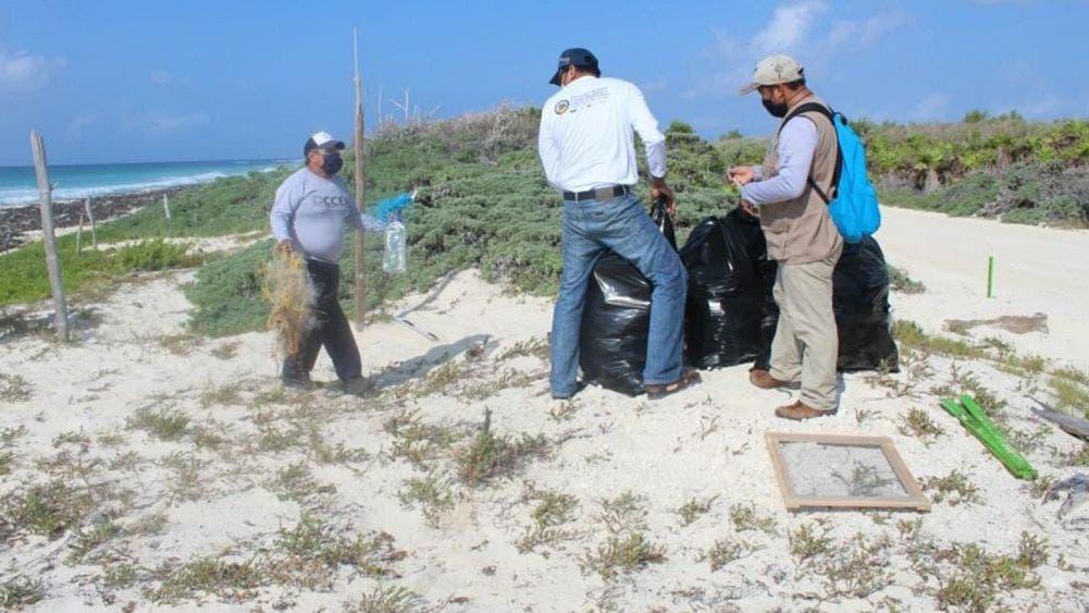 Fundación de parques y museos reactiva programa de limpieza de playas