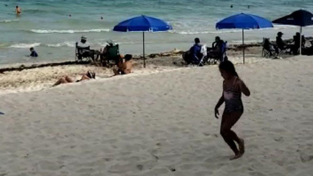 Reinician actividades turisteros de Playa Del Carmen