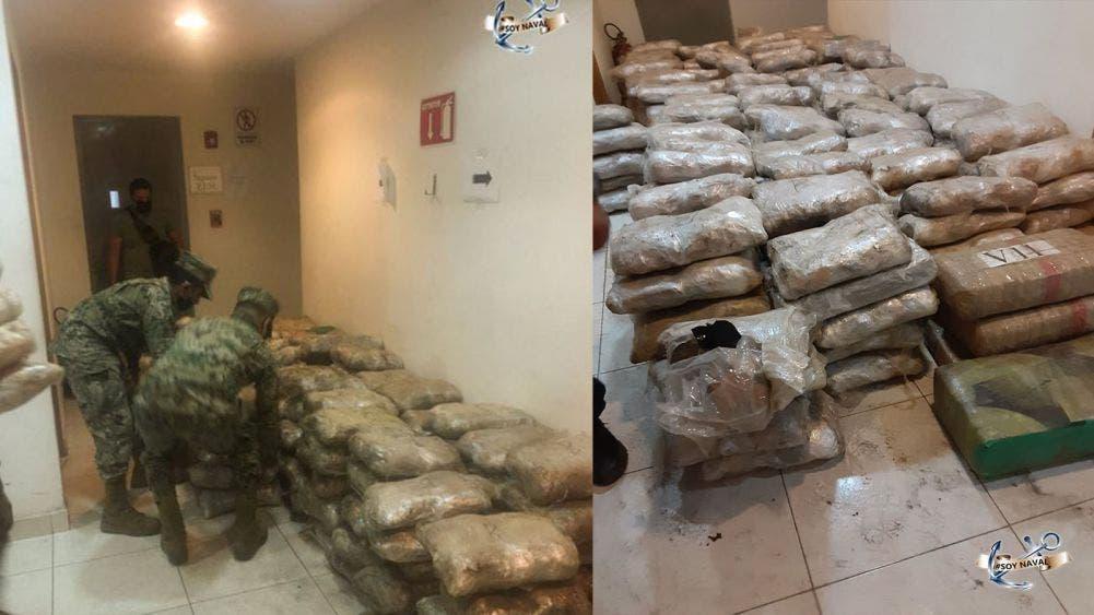 Decomisa Semar y GN 700 kilos de marihuana en Ensenada