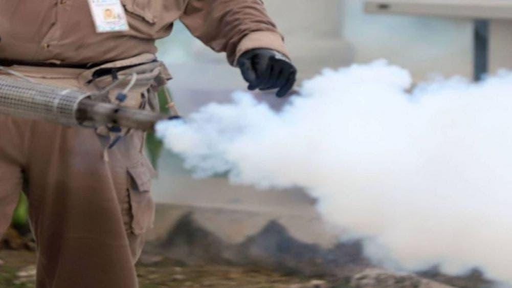 ¡Alarmante! En Querétaro se disparan los casos de dengue
