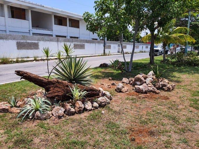 Trabajan para mejorar la imagen urbana de Cancún; se utilizan materiales reciclados como piedras, madera y llantas.