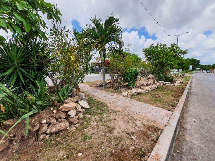 Trabajan para mejorar la imagen urbana de Cancún.