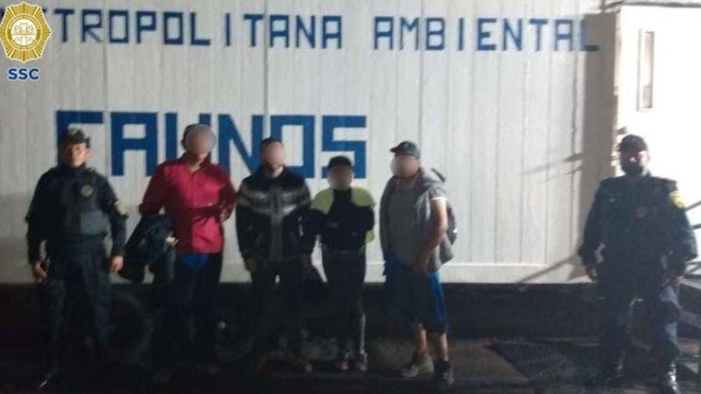 Rescatan con vida a 7 personas extraviadas en el cerro Pico del Águila en Tlalpan