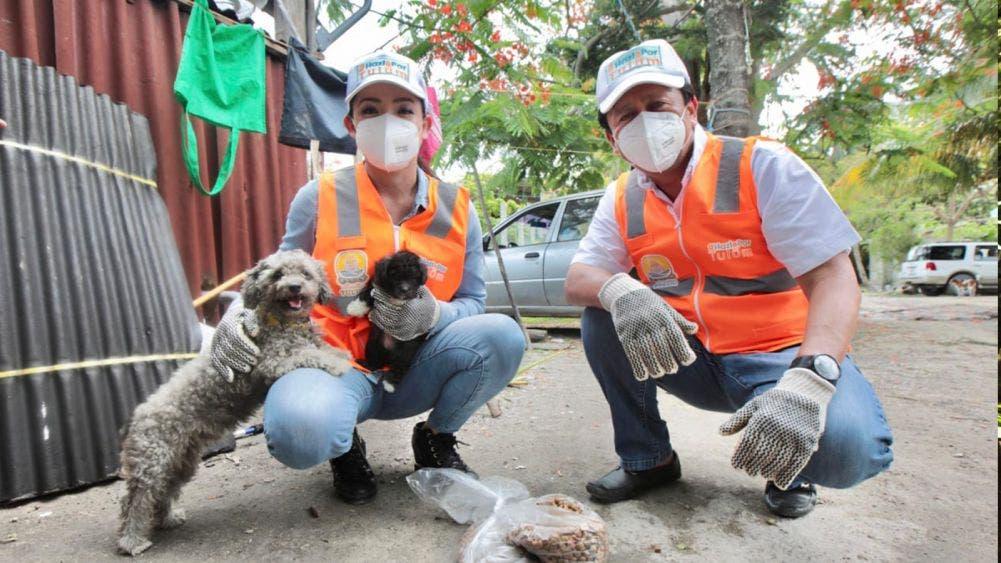 Ahorro en pirotecnia de fiestas patrias a esterilización de mascotas: VMT