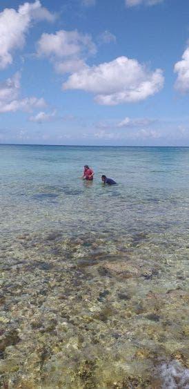 Capturan cocodrilo en playa de Cozumel; bomberos atendieron el llamado de emergencia en la zona costera de la isla.