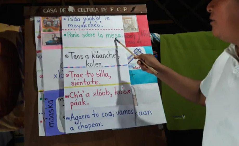 La enseñanza de la lengua maya continúa pese a la pandemia; excelente labor la que realiza al maestro Gonzalo Pech Chuc en FCP.