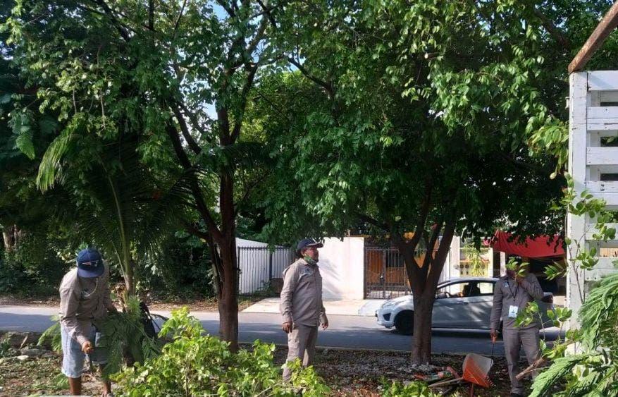 La Presidenta Municipal informa que se lleva a cabo una intensa jornada de limpieza de rejillas y pozos de absorción, así como poda de árboles