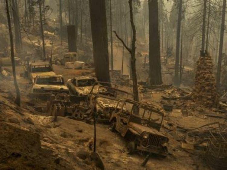 """""""Cambio climático será peor que el Covid-19"""""""