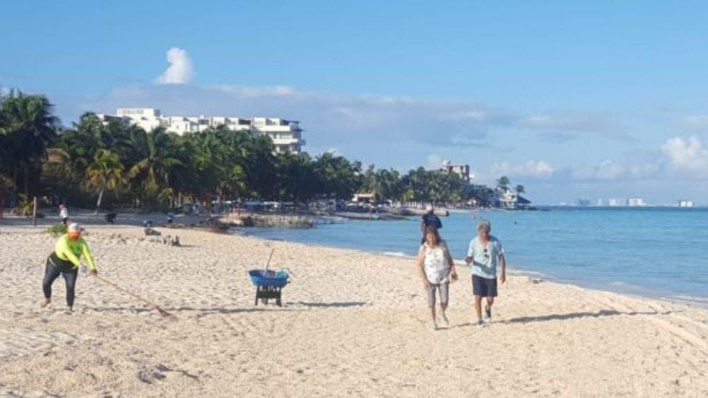 Disminuye sargazo en Caribe Mexicano gracias a confinamiento