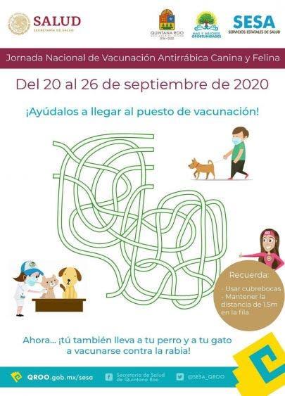 Realizarán campaña de vacunación antirrábica en Cancún.