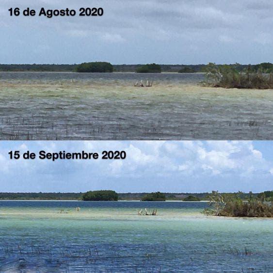 Rechazan que sea grave la contaminación en la laguna de Bacalar; medición reciente de la Conagua así lo confirma: Ecología Municipal.