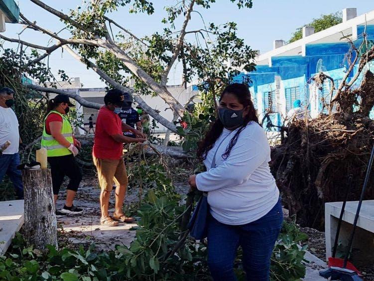 """Llevan a cabo trabajos de limpieza, poda de árboles y ramas y recolección de material vegetal en la primaria """"Miguel Ángel González Quijano"""""""