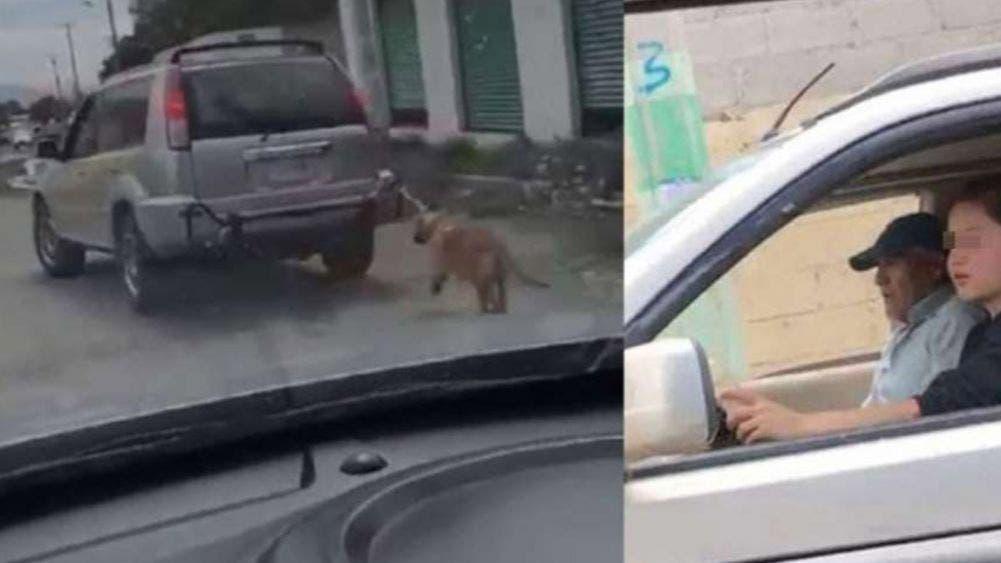 ¿Maltrato animal? 'Pasean' a su perro atándolo atrás de una camioneta