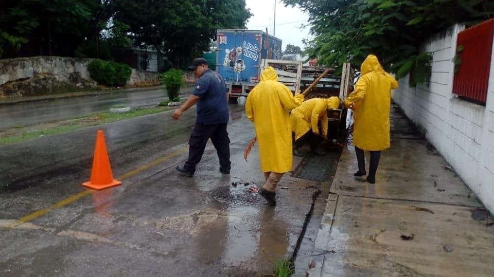 Tormenta tropical 'Gamma' dejó afectaciones en Zona Maya.
