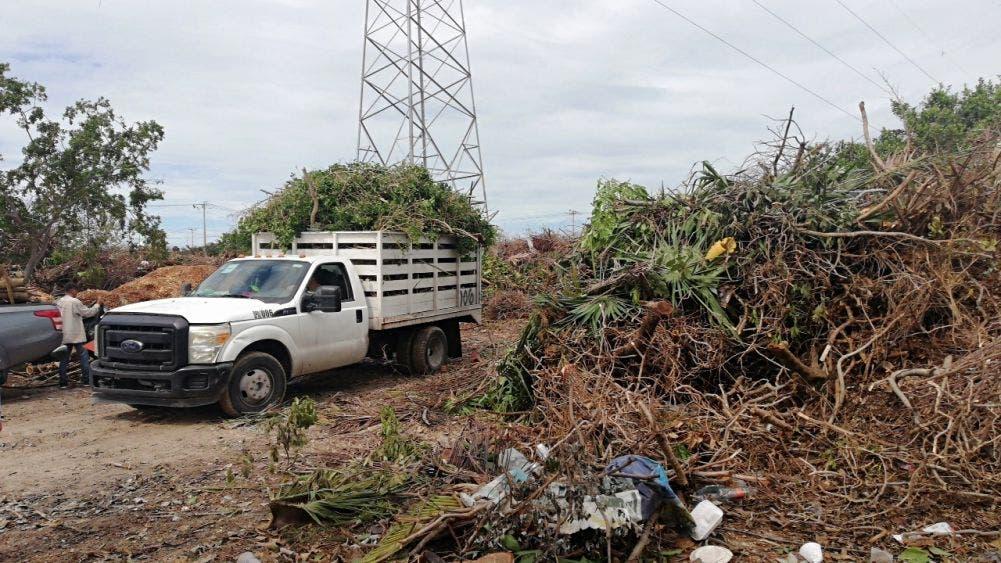 Ya no da más el centro de acopio de basura vegetal de Cancún.
