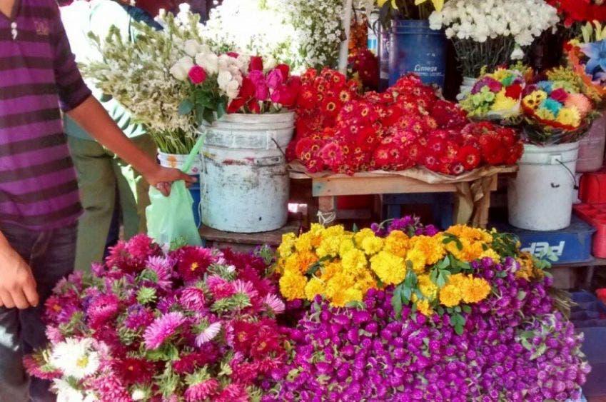 Venta de flores baja